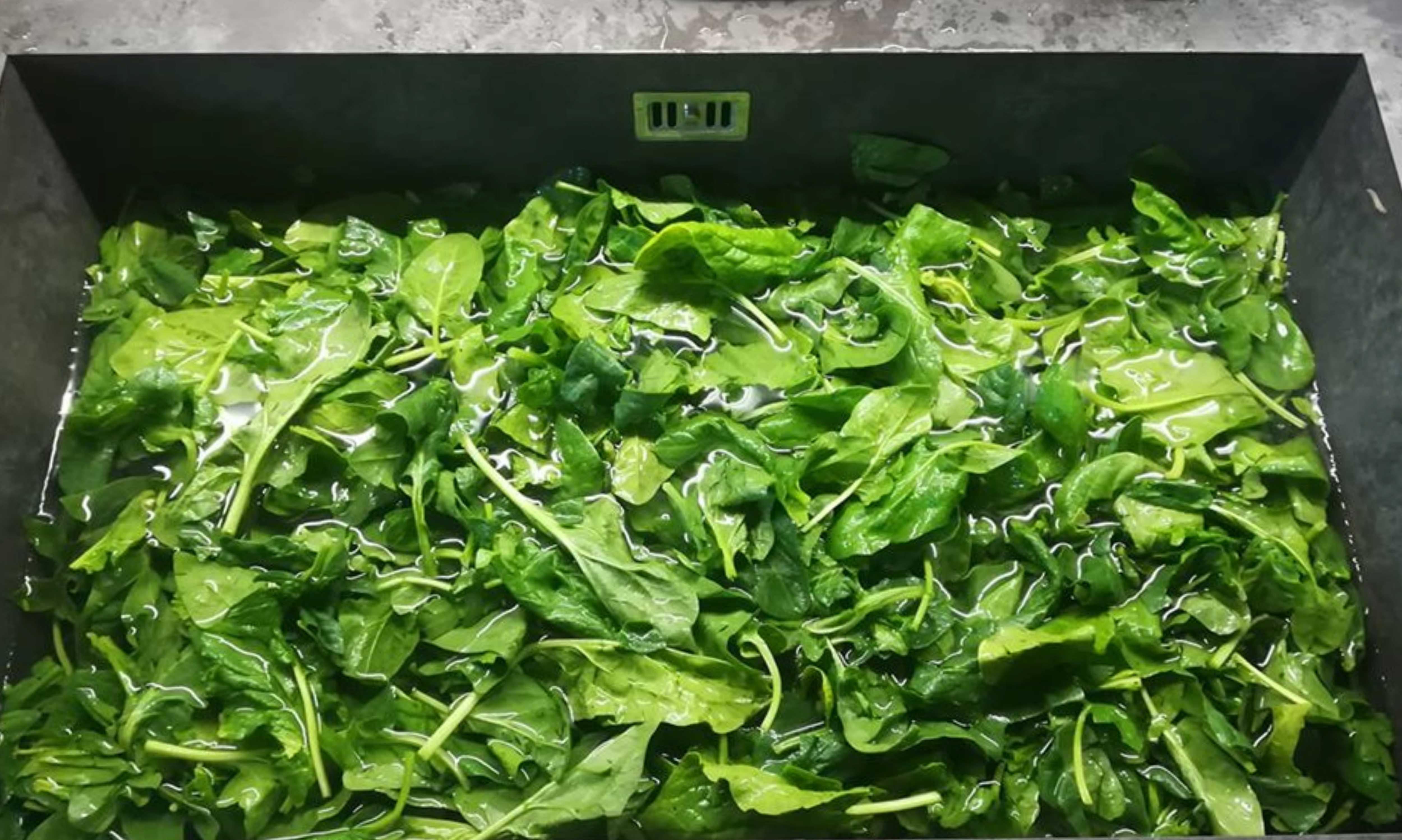 Meglio gli spinaci freschi! Perché?