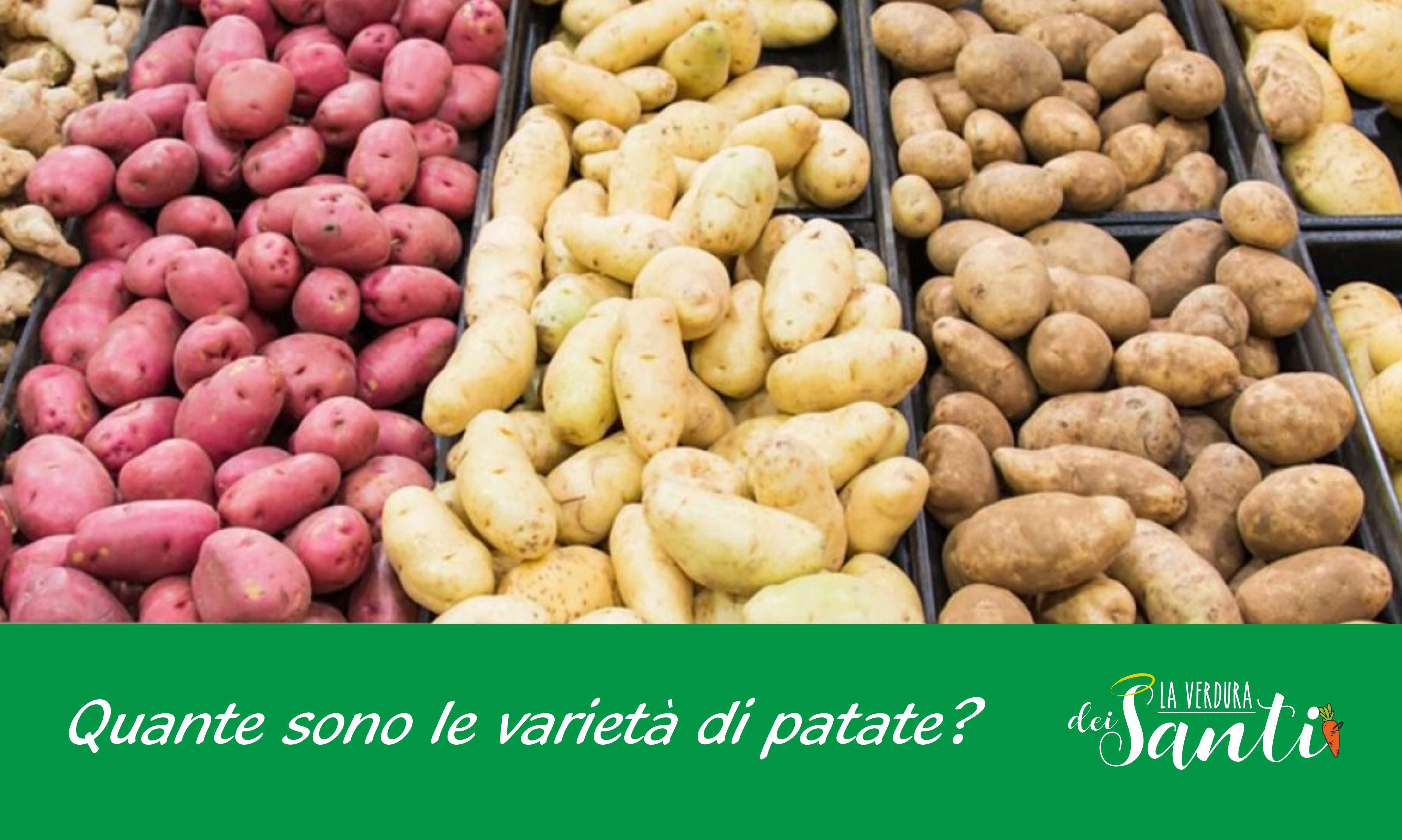 Tipi di patate: quali esistono e quali scegliere.